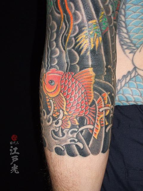 金魚、赤色の刺青タトゥー