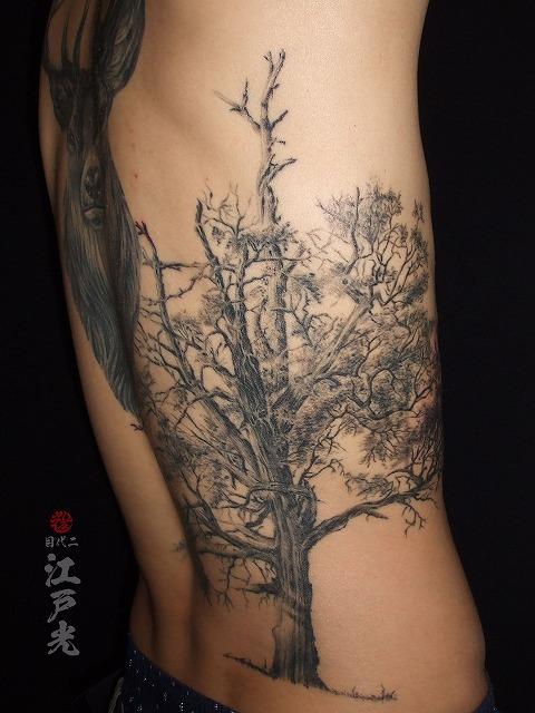 木、樹木、植物の刺青タトゥーTree tattoo